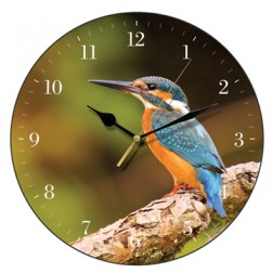 Kingfisher Bird Wall Clock