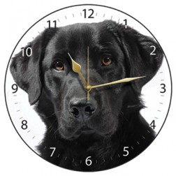 Black Labrador White Wall Clock