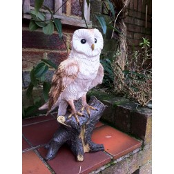 Barn Owl Garden Ornament
