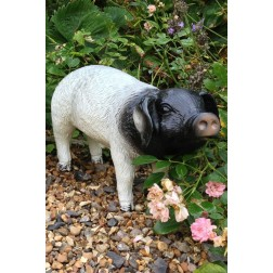 Black & White Pig Up Garden Ornament