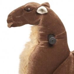 Medium Ride on Camel