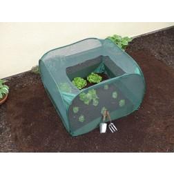 Pop-Up Fruit & Veg Net Protection Cage 1.00m x 1.00m x 0.75m high
