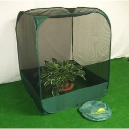 Pop-Up Fruit & Veg Net Cage