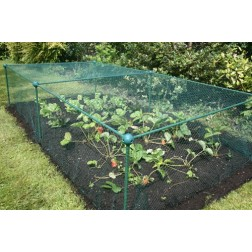 Netted Fruit and Vegetable Cage approx 2' high - protect against pests - choice of sizes (2.00m x 1.00m x 0.625m high)