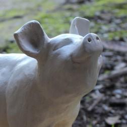 White Pig Garden Ornament
