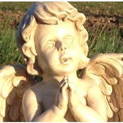 Praying Cherub Garden Ornament