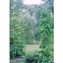 Black Monet Garden Arch