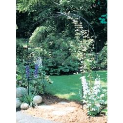 Black Oregon Garden Arch