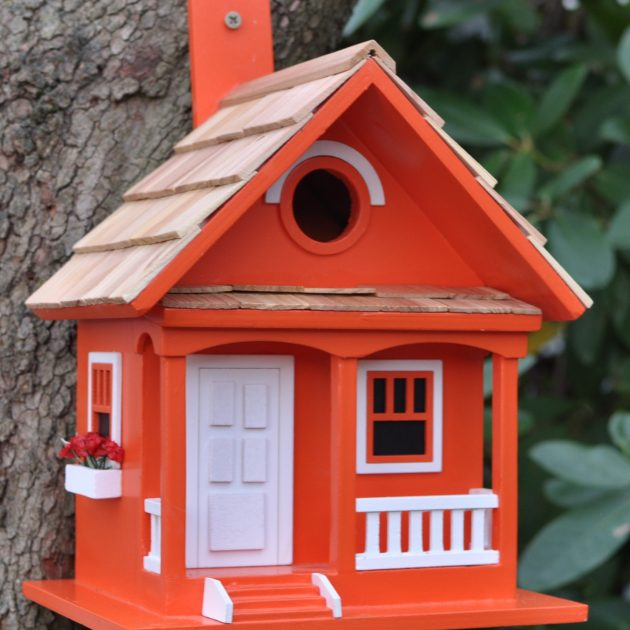 bird house feeder