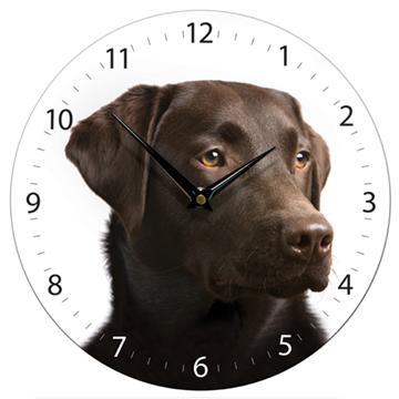 Chocolate Labrador wall clock