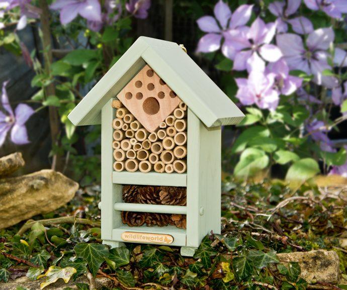 Bee and Bug Biome-3641