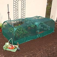 Double Pop-Up Garden Net Protection Cage 0.75m High x 2.5m Long x 1.25m Wide-0