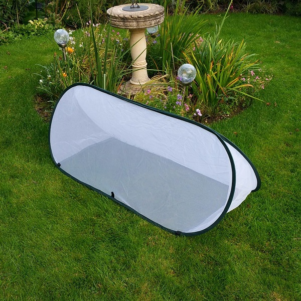 Small Pop Up Insect Net Cloche