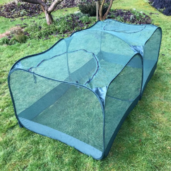 Double Pop-Up Net Cage 0.75m High