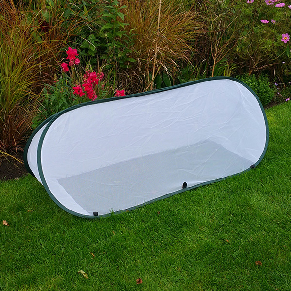 Large Pop Up Insect Net Cloche 0.6m high