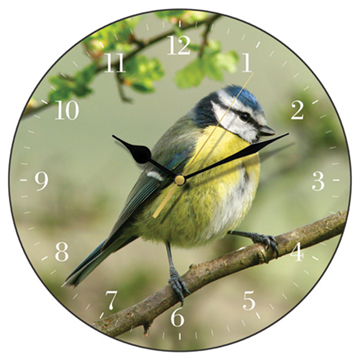 Blue Tit Wall Clock-0