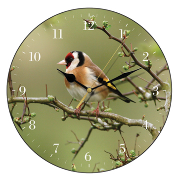 Goldfinch Wall Clock-0