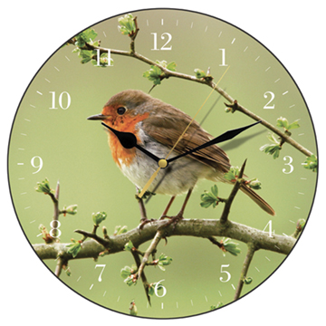 Robin Wall Clock-0