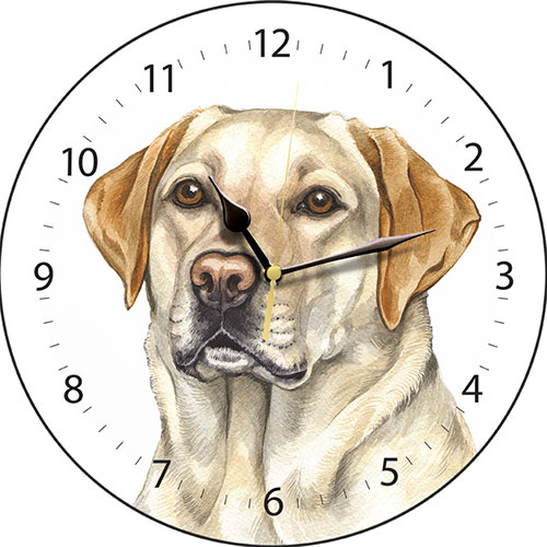 Golden Labrador Dog Wall Clock