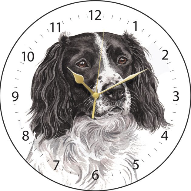 Springer Spaniel Wall Clock