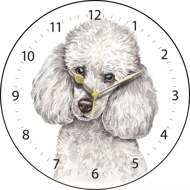 White Miniature Poodle Wall Clock