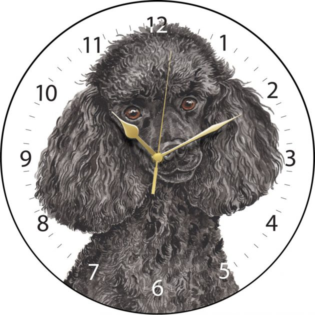 Black Miniature Poodle Wall Clock