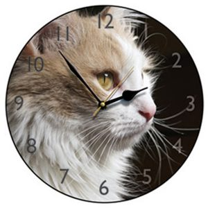 Fluffy Cat Round Wall Clock
