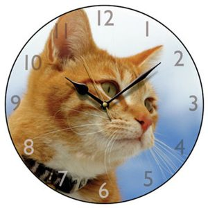 Ginger Cat Round Wall Clock