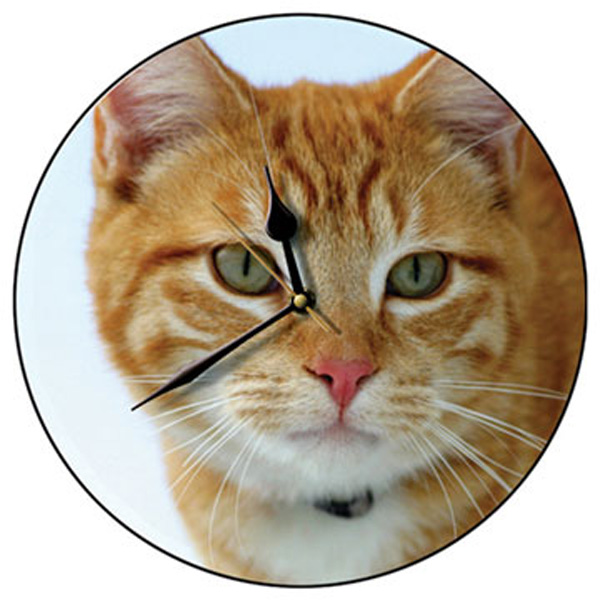 Marmalade Cat Round Wall Clock-0