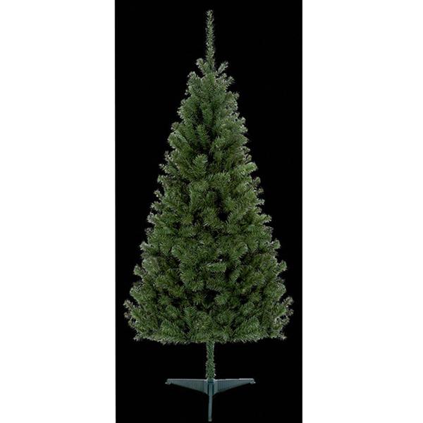 2.4m Douglas Fir Christmas Tree