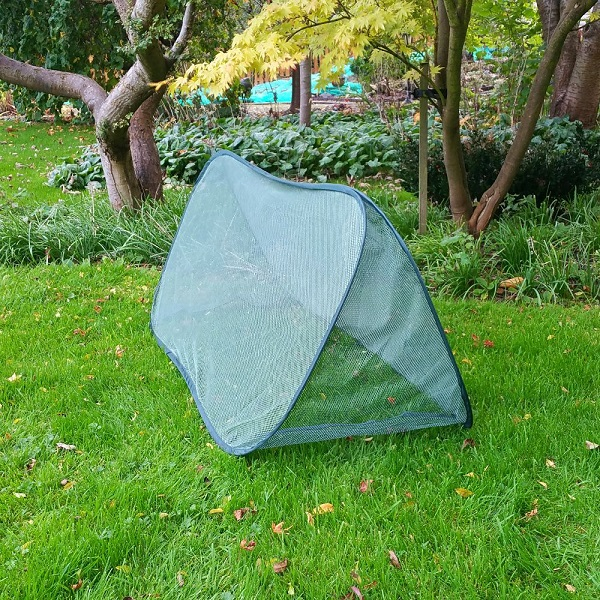 Large Pop-Up Triangular Net Cloche 1.5m x 0.6m wide x 0.6m high